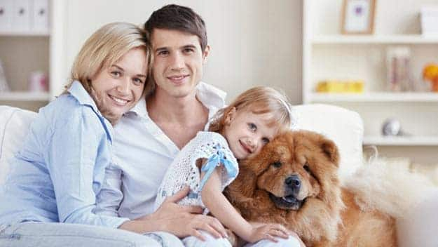 Wills & Trusts dog-young-family Direct Wills Perivale
